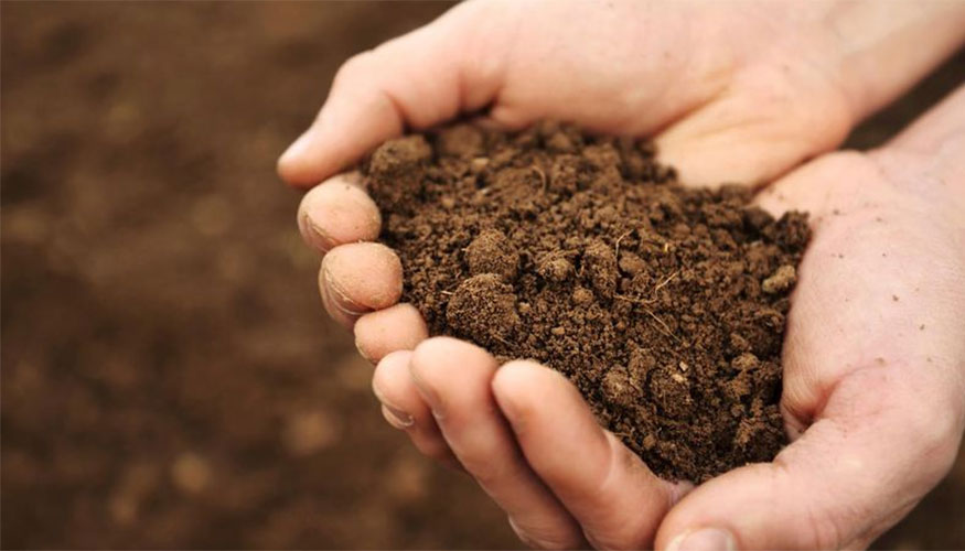 4 questions for evaluating your soil mountain view church for Soil questions
